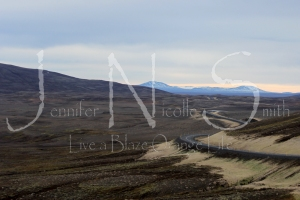 I've completely fallen in love with the winding road of Iceland. Even if it did terrify me at times!